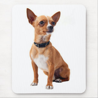 Love Chihuahua Puppy Dog Canine Mouse Pad