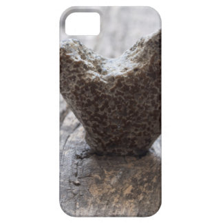 love concept case for the iPhone 5