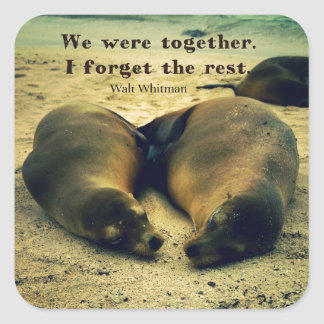 Love couple quote sea lions on the beach square sticker