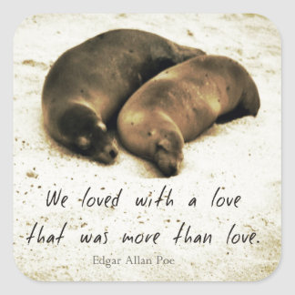 Love couple romantic quote sea lions on the beach square sticker