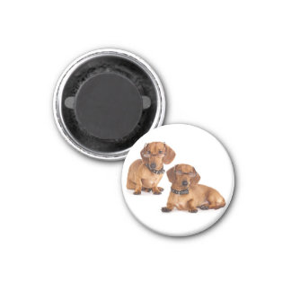 Love Dachshund Puppy Dog Fridge Magnet