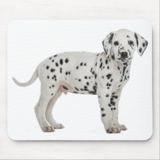 Love Dalmatian Puppy Dog Mousepad