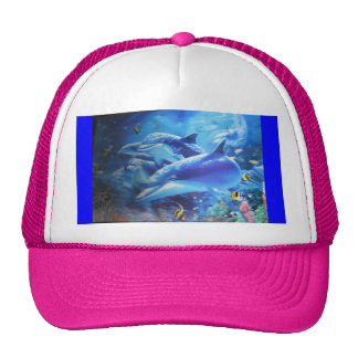 Love Dolphin Hat