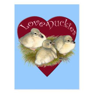 Love Duckies Postcard