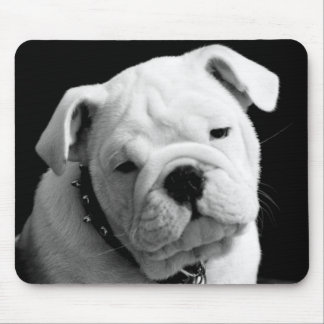 Love English Bulldog Puppy Dog Photo Mousepad