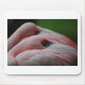 Love Flamingos Mouse Pad