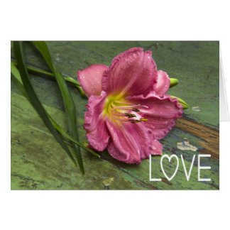 Love Floral Pink Lily Flower Blank Notecard Note Card