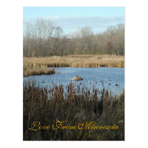 Love From Minnesota Postcards
