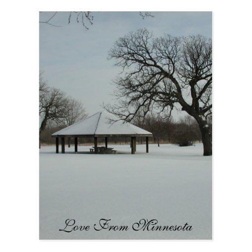 Love From Minnesota Post Card