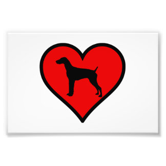Love German short-Haired Pointer Silhouette Heart Photo Print