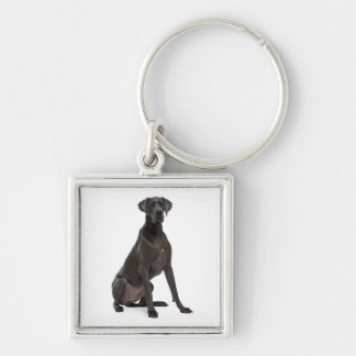 Love Great Dane Puppy Dog Silver-Colored Square Key Ring