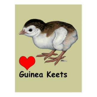 Love Guinea Keets Postcard