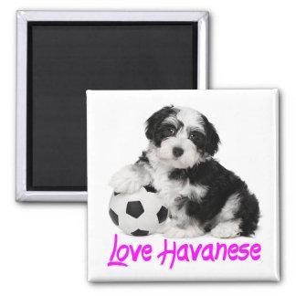 Love Havanese Puppy Dog Magnet