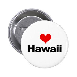 Love Hawaii Pins