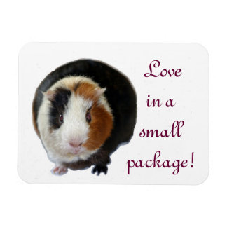 Love In A Small Package Vinyl Magnet