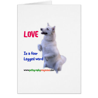 Love is a four legged word card