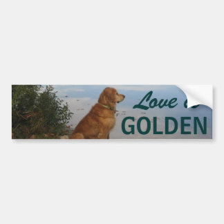 Love is Golden Bumper Sticker