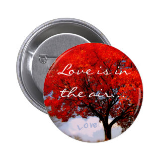 Love is in the air... 6 cm round badge