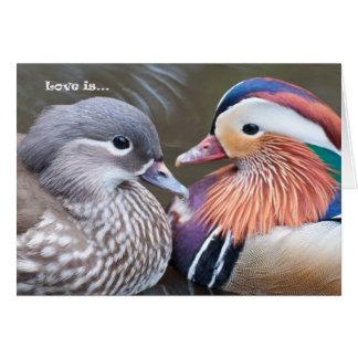 Love is... Mandarins Card