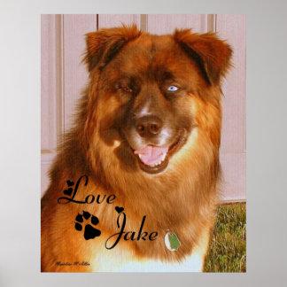 Love Jake Poster