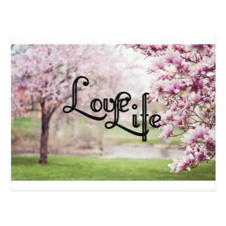 Love Life Postcard
