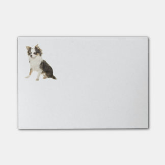 Love Long Hair Chihuahua Puppy Dog Post-it Notes