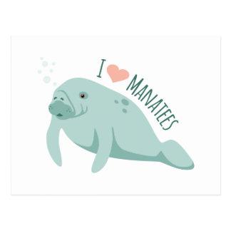 Love Manatees Postcard