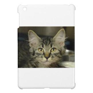 Love Me Kitten iPad Mini Cover