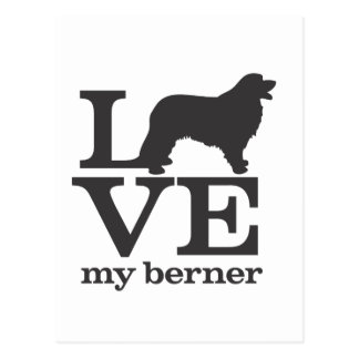 Love my Bernese Mountain Dog Postcard