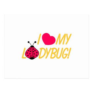 Love My Ladybug Postcard
