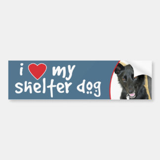 Love My Shelter Dog Belgian Sheepdog Bumper Sticker