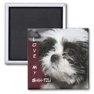 Love My Shih-Tzu Magnet