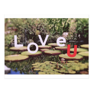 Love of Nature Postcard