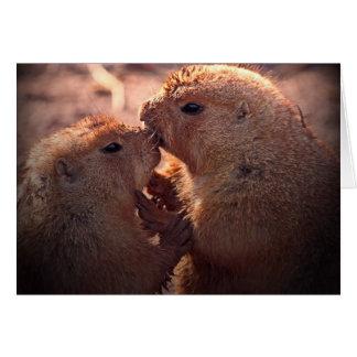 Love on the prairie card