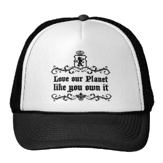 Love Our Planet Like You Own It Medieval quote Cap