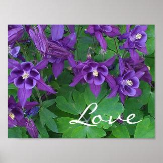"Love - Purple Columbines -11""x 8.5"" Poster"