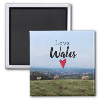 Love Wales Hill Landscape Welsh Farm Sheep Magnet