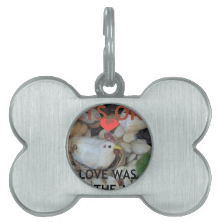 Love was in the Air Pet ID Tags