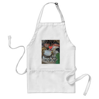 Love was in the Air Standard Apron