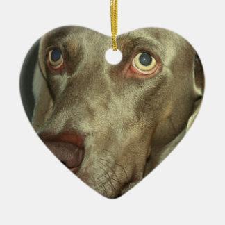 Love Weimaraner  Ornament