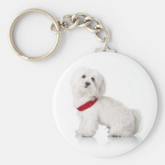 Love White Bichon Frise Puppy Dog Keychain