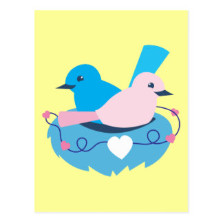 Love wrens lovebirds nest postcard