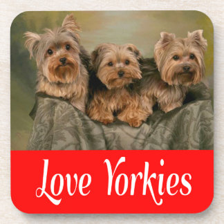 Love Yorkies Yorkshire Terrier Puppy Dog  Coaster