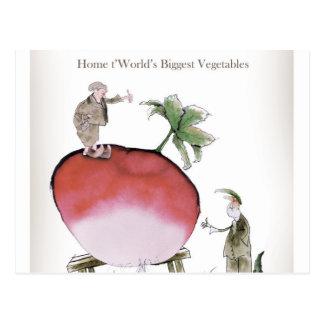 Love Yorkshire big radish Postcard