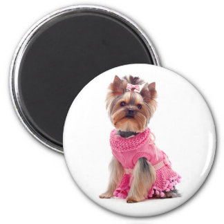 Love Yorkshire Terrier Puppy Dog Magnet