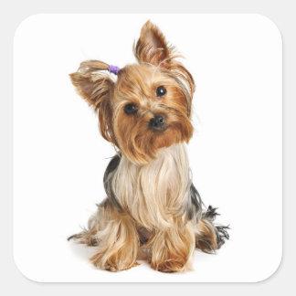 Love Yorkshire Terrier Puppy Dog Sticker / Seals