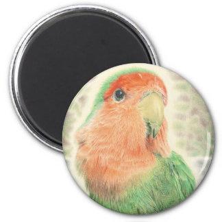 Lovebird Pilaf 6 Cm Round Magnet