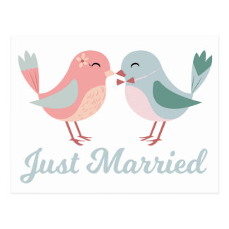 Lovebirds Pink & Blue Just Married Wedding Postcard