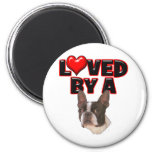 Loved by a Boston Terrier Magnets