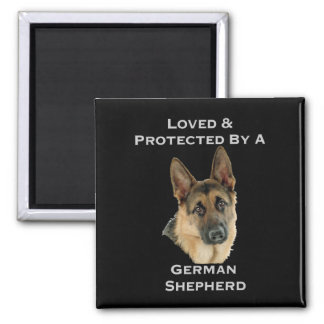 Loved & Protected By A German Shepherd Square Magnet